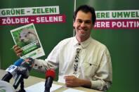 Grüne Abgeordnete Wolfgang Spitzmüller