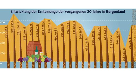 Weinlese Burgenland Grafik