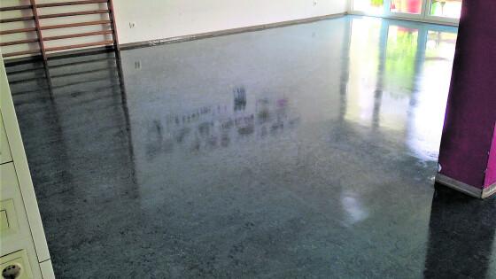 440_0008_7960005_nsd43_clean2.jpg