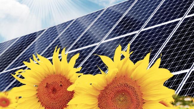 Sonnenenergie Photovoltaik erneuerbare Energie Sonne Symbolbild