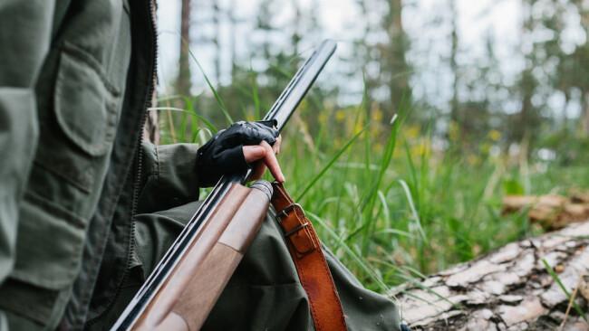 Jagd Jäger Symbolbild