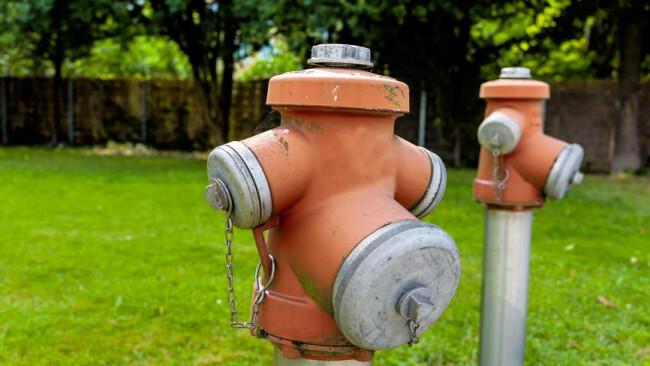 Hydrant Hydranten auf einer Wiese Hydranten auf einer Wiese, Symbol für Löschwasser, Brandschutz, Infrastruktur