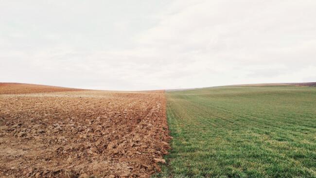 Wiese Acker Grenze Grundstück