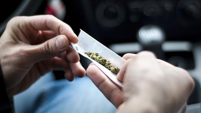 Drogen Drogenlenker Cannabis Marihuana Symbolbild