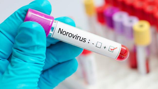 Norovirus Symbolbild