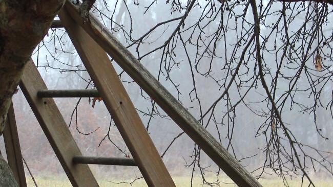 Leiter Holzleiter Symbolbild