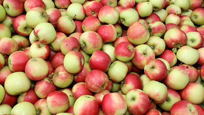 Im Supermarkt werden wenig heimische Äpfel angeboten