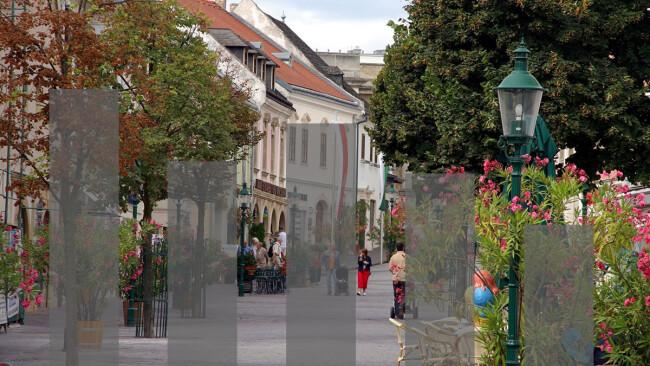 Wahlergebnisse Gemeinderatswahl Burgenland Symbolbild