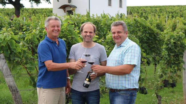 Bezirk Oberpullendorf - Rotweintage finden statt, Rotweinerlebnis verschoben