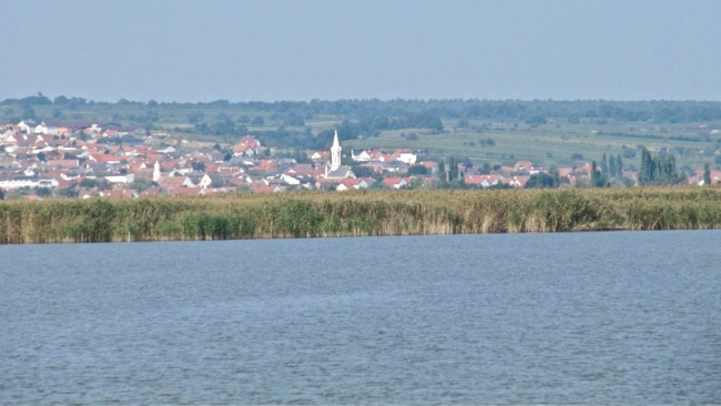 Neusiedler See Burgenland