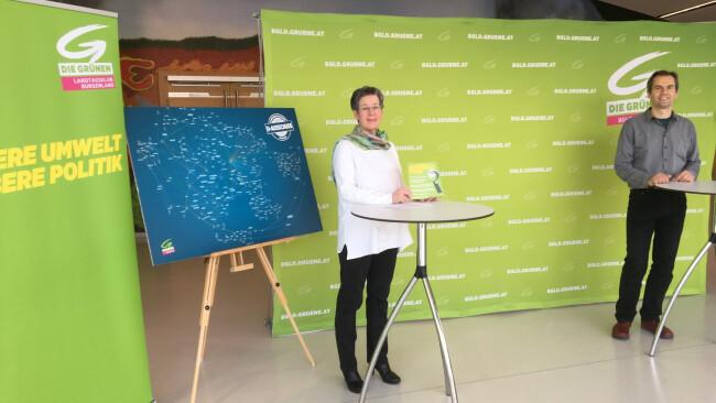 Cb-U-Ausschuss - Grüne: Land soll zu Fehlern stehen und daraus lernen
