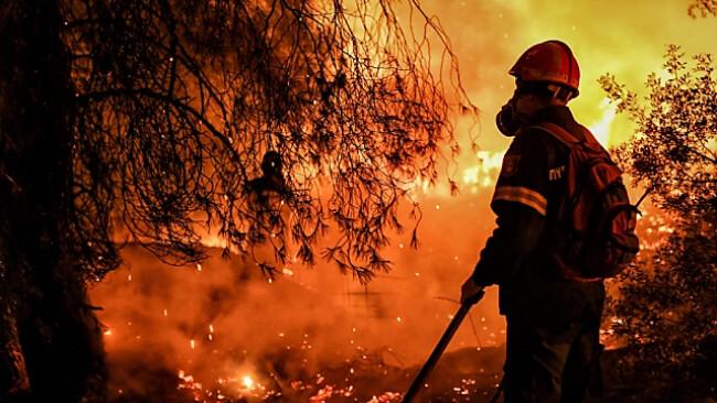 Der Süden kämpft gegen Hitze und Flammen