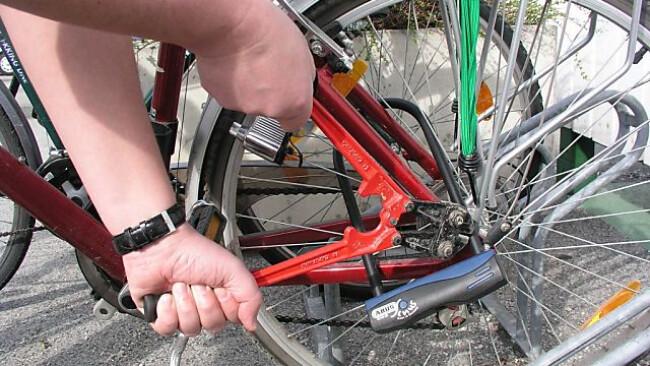 Auch mehrere Fahrraddiebstähle gingen auf das Konto der Bande